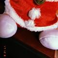 写真: 君は誰?~Santa(cat?) on B&W listening Xmas songs~フィルム想い出~