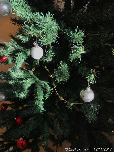 写真: 光と陰のXmas Tree ~heartwarming shine