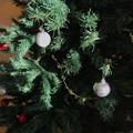 Photos: 光と陰のXmas Tree ~heartwarming shine