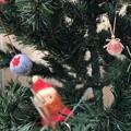 写真: Santa is in Xmas Tree ~今年も会えたチビサンタ~木々の奥のサンタへタップフォーカス