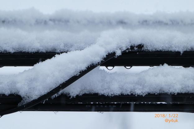 Photos: 細い電線にまで降りつもる大雪 ~snow cable