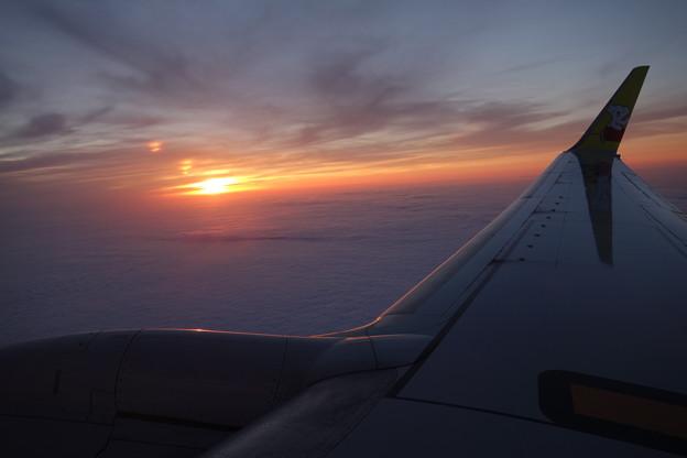 写真: 夕焼けと翼