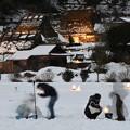 Photos: かやぶきの里雪まつり