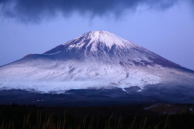 マダラ富士