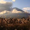 Photos: 秋の夕刻