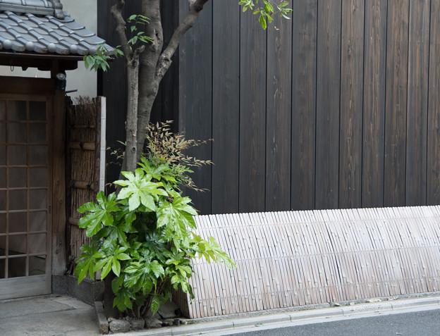 京都の裏道、お散歩中