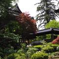 Photos: 隆国寺