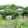写真: 港の見える丘公園 フランス山 (1)