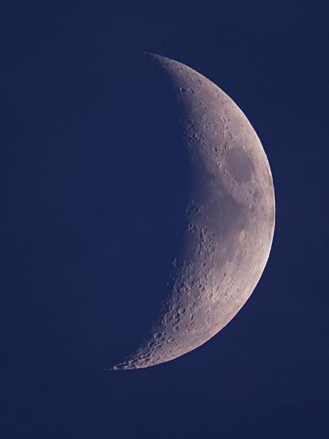 月齢5.1 170728