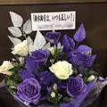 写真: パシフィコ横浜 乃木坂46 様へ2