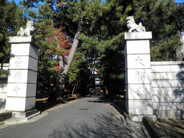 世田谷線:宮の坂駅界隈_豪徳寺-02参道(石柱の上に狛犬)