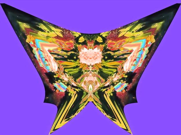 蝶の言葉-06a(2)