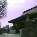 写真: 法禅寺_本堂a