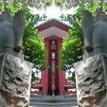 写真: 満桜稲荷神社-19_神使(a)