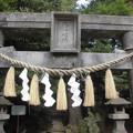 Photos: 太陽稲荷神社-01b