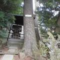 写真: 太陽稲荷神社-03a
