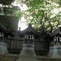 Photos: 宇山稲荷神社-07境内社