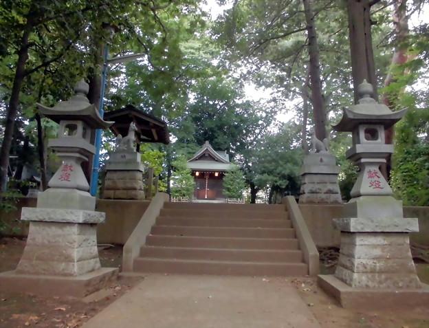 宇山稲荷神社-03石燈籠・神使・拝殿