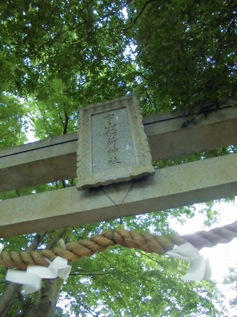 宇山稲荷神社-02鳥居c_風