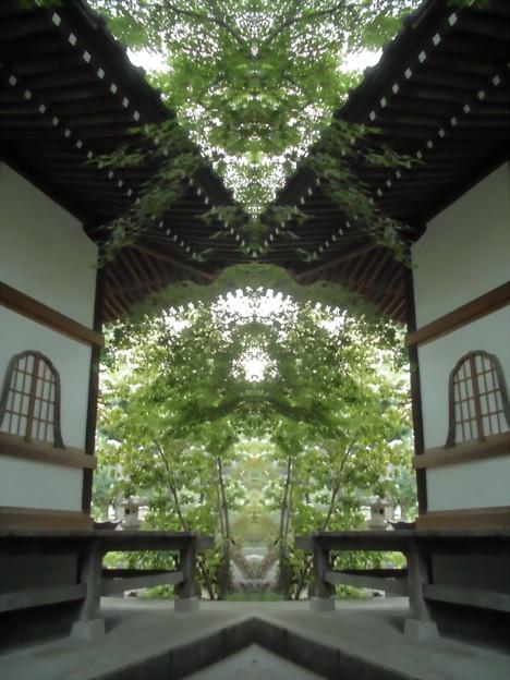 Photos: 久成院-04境内d(本堂から)