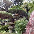 Photos: 久成院-07石燈籠a