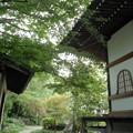 Photos: 久成院-04境内c(本堂から)