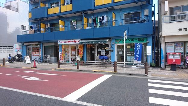芦花公園 サン・マロー
