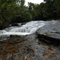 ガラスマオの渓流