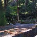 Photos: 最乗寺の道