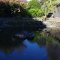 Photos: 清左衛門地獄池