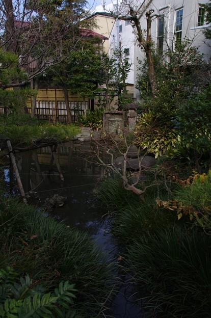 蟠龍地の池