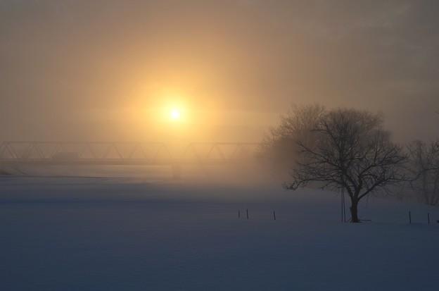 霧の朝に~3月朝