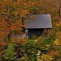 山小屋の紅葉