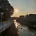 写真: 夕陽と鶴見川