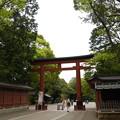 写真: 20170426 氷川神社散策