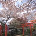 写真: 丸高稲荷神社01