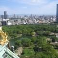写真: 天下人気分:大阪周遊39