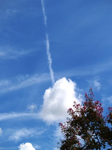 写真: 突き抜ける秋空