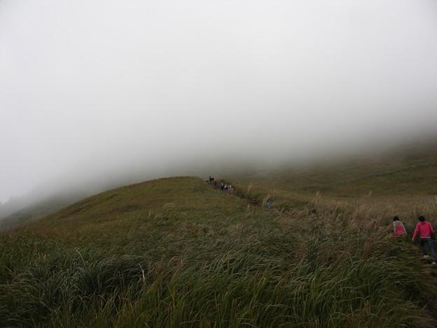 写真: 霧の中へ:曽爾高原10