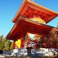 写真: 根本大塔とお遍路さん:高野山紅葉17