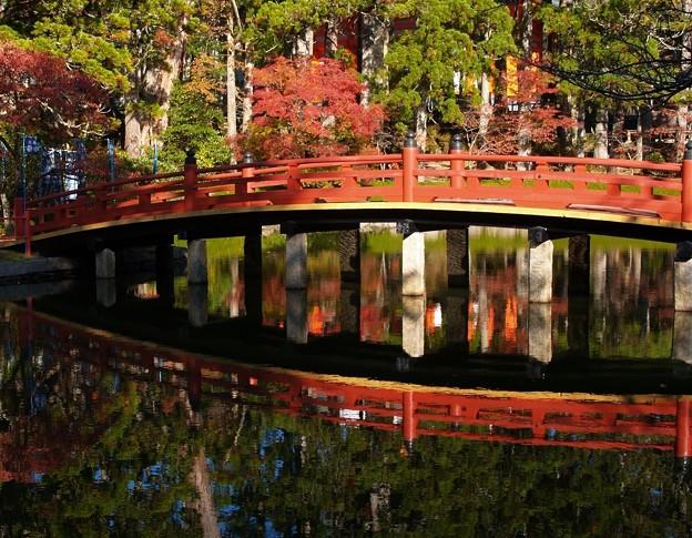 水鏡:高野山紅葉46