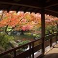 姫路城西御屋敷跡庭園:秋景色好古園06