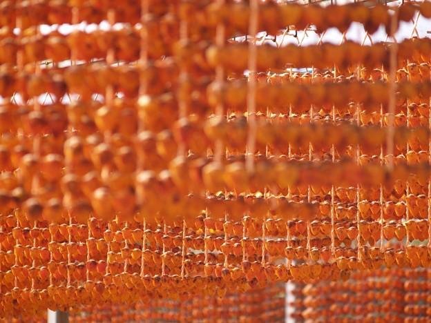 柿暖簾:串柿の里08