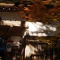 写真: 朝の静寂:金剛峰寺05