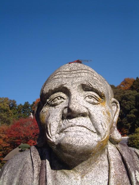 写真: 頭に...何か?:興禅寺晩秋01