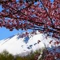 写真: 岩手山