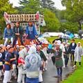 写真: 逗子市民祭り神輿パレード