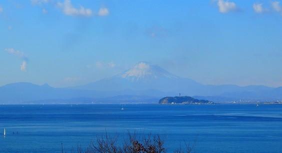 逗子蘆花記念館からの富士山