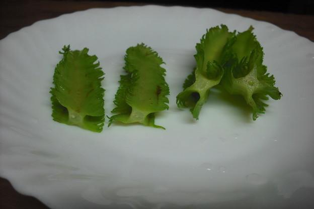 写真: 四角豆の切り口