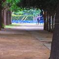 公園の片隅で・・